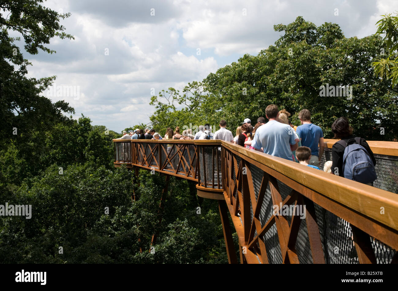 Xstrata Treetop Walkway à Kew Gardens London England UK Photo Stock