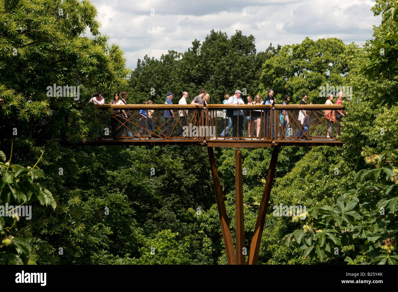 Xstrata Treetop Walkway à Kew Gardens, Londres, Angleterre, Royaume-Uni Photo Stock