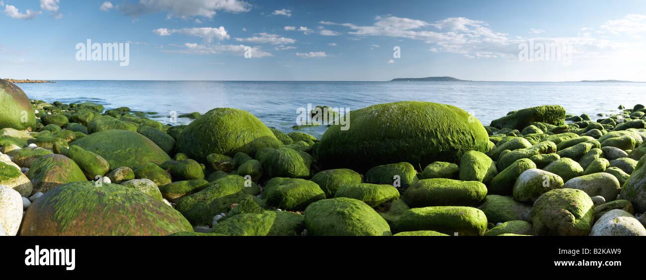 Les roches vertes à Osmington vers Portland à l'horizon dans le comté de Dorset, Angleterre, Royaume-Uni Banque D'Images