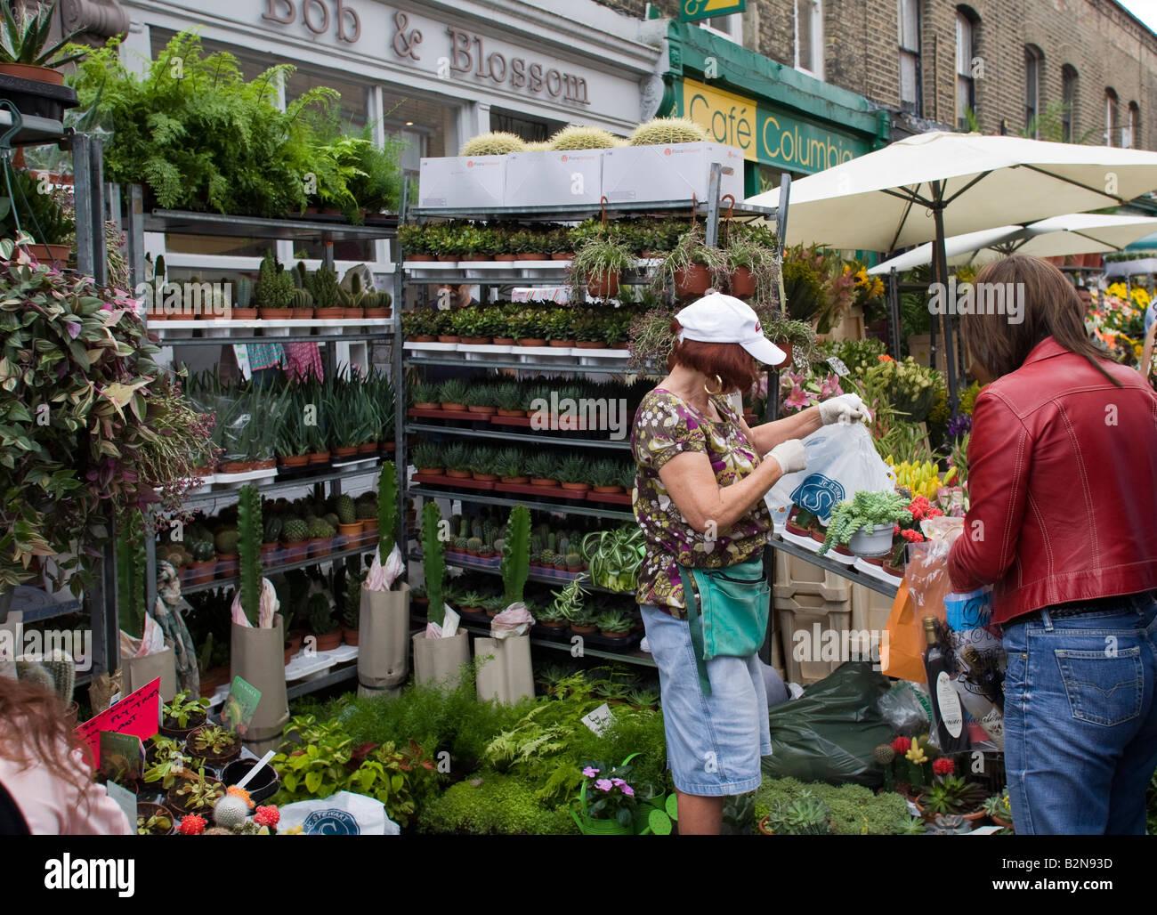 Columbia Road Dimanche Marché aux fleurs d'Hackney Road East London GB UK Photo Stock