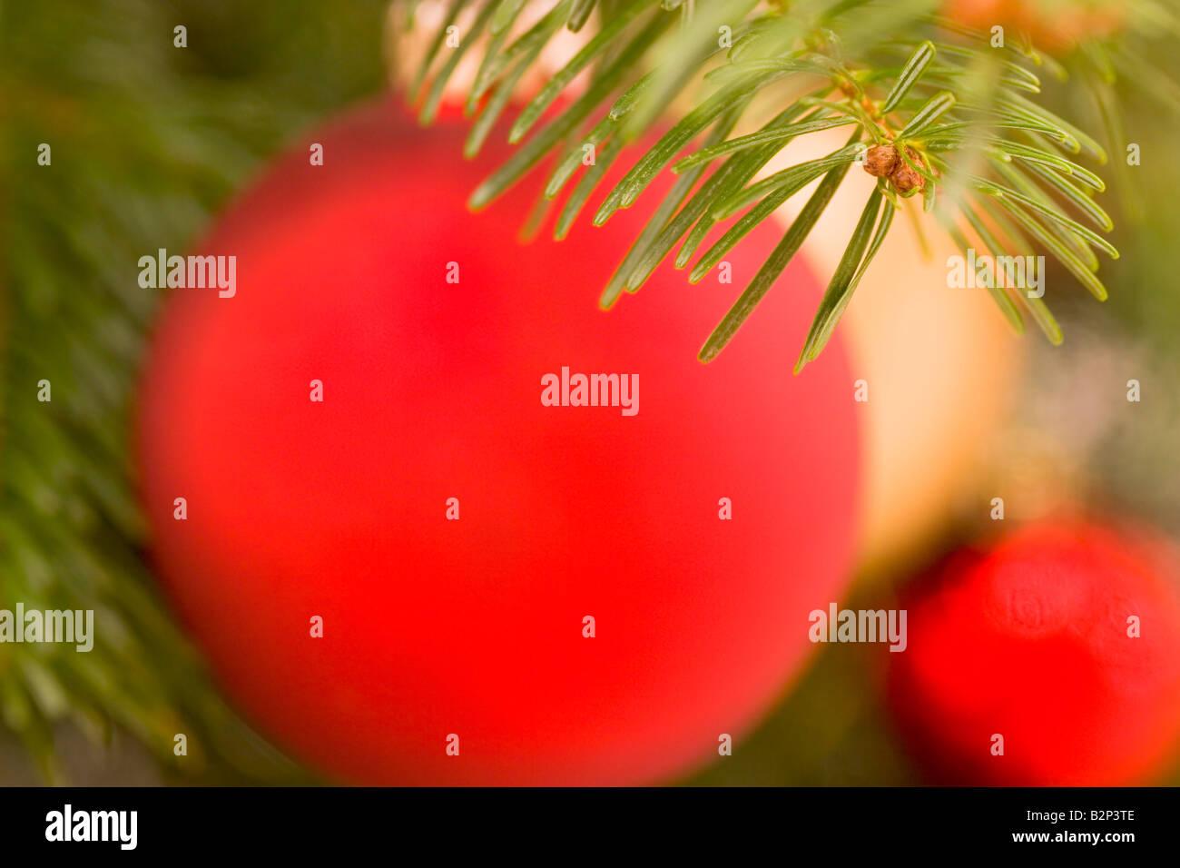 Arrière-plan flou de décorations de Noël l'accent sur les aiguilles de sapin en premier plan Banque D'Images