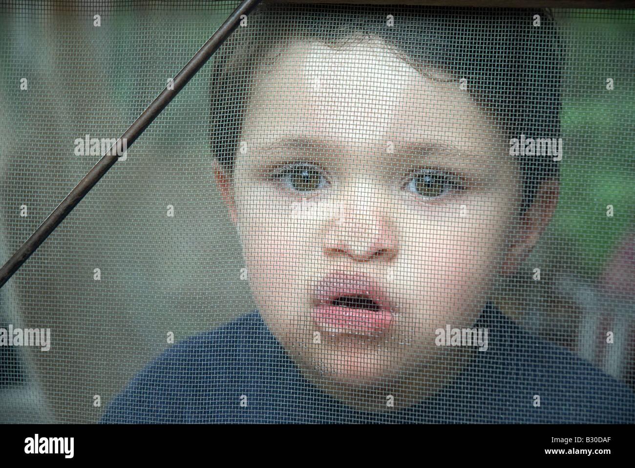 Trois ans pousse son nez contre une porte écran, New Hampshire Banque D'Images