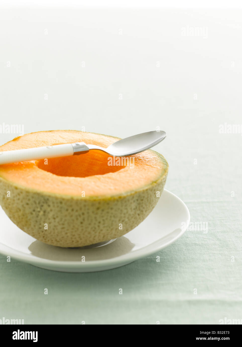 Melon cantaloup, selective focus Photo Stock