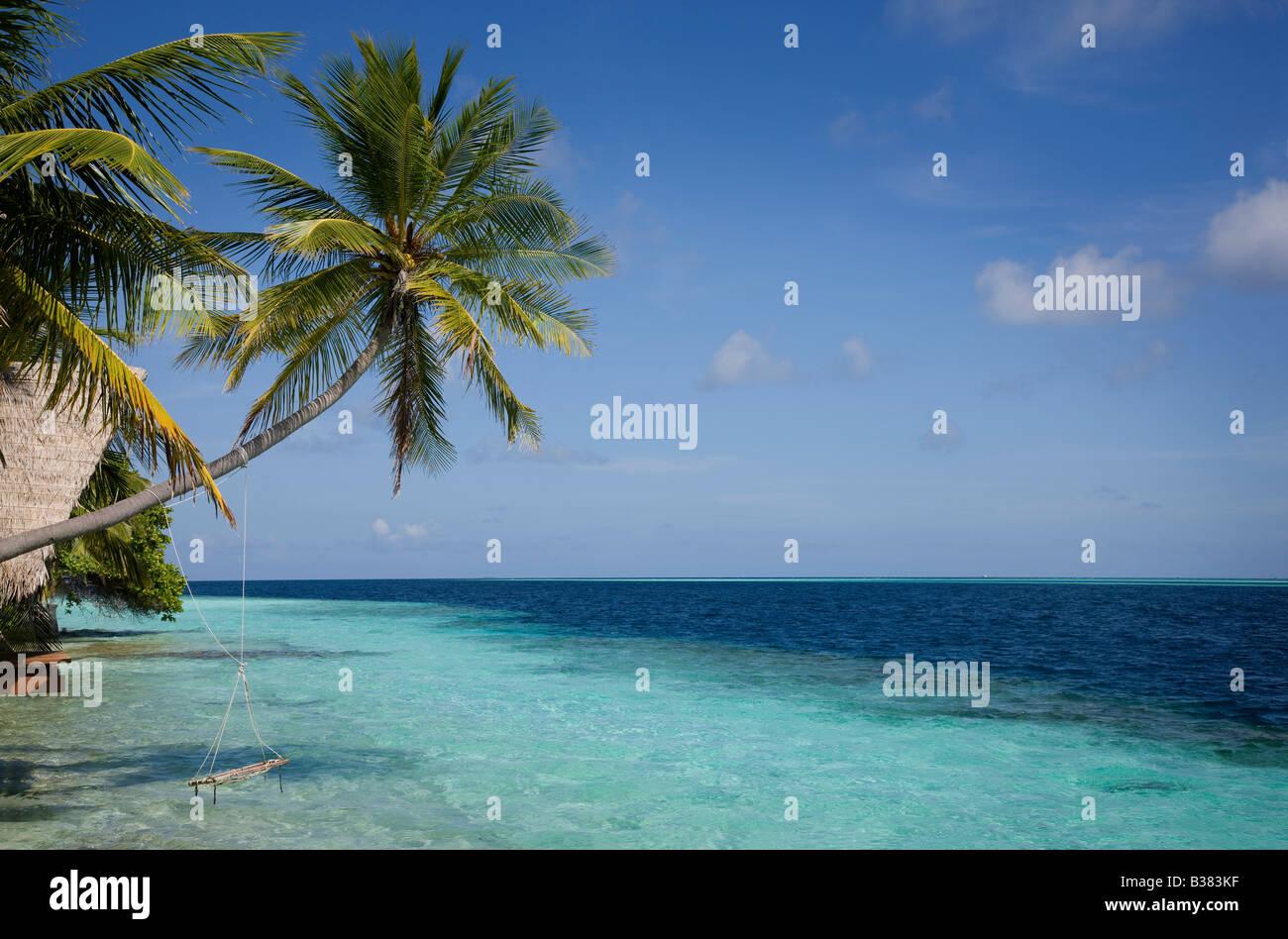 Rope swing sur South Ari Atoll Maldives près de l'Inde Banque D'Images
