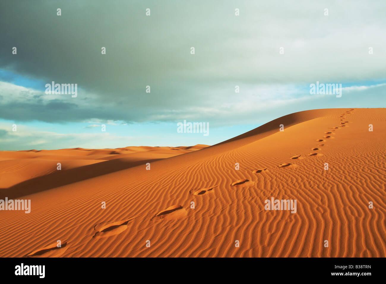 Dune de déserts Photo Stock