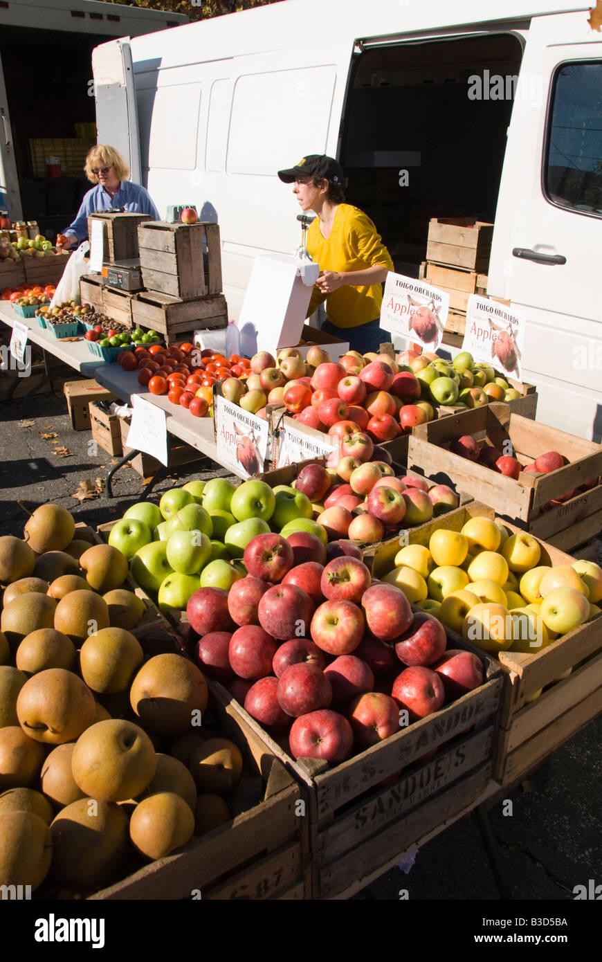 Washington DC USA Takoma Park Farmers Market vendeur Apple Photo copyright Lee Foster Photo 26 washdc75359 Photo Stock