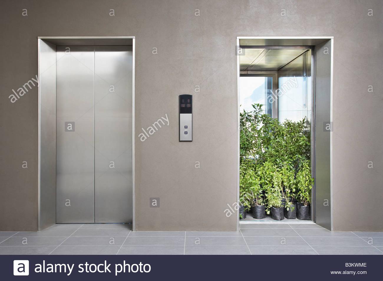 Ascenseur bureau plein de plantes Photo Stock