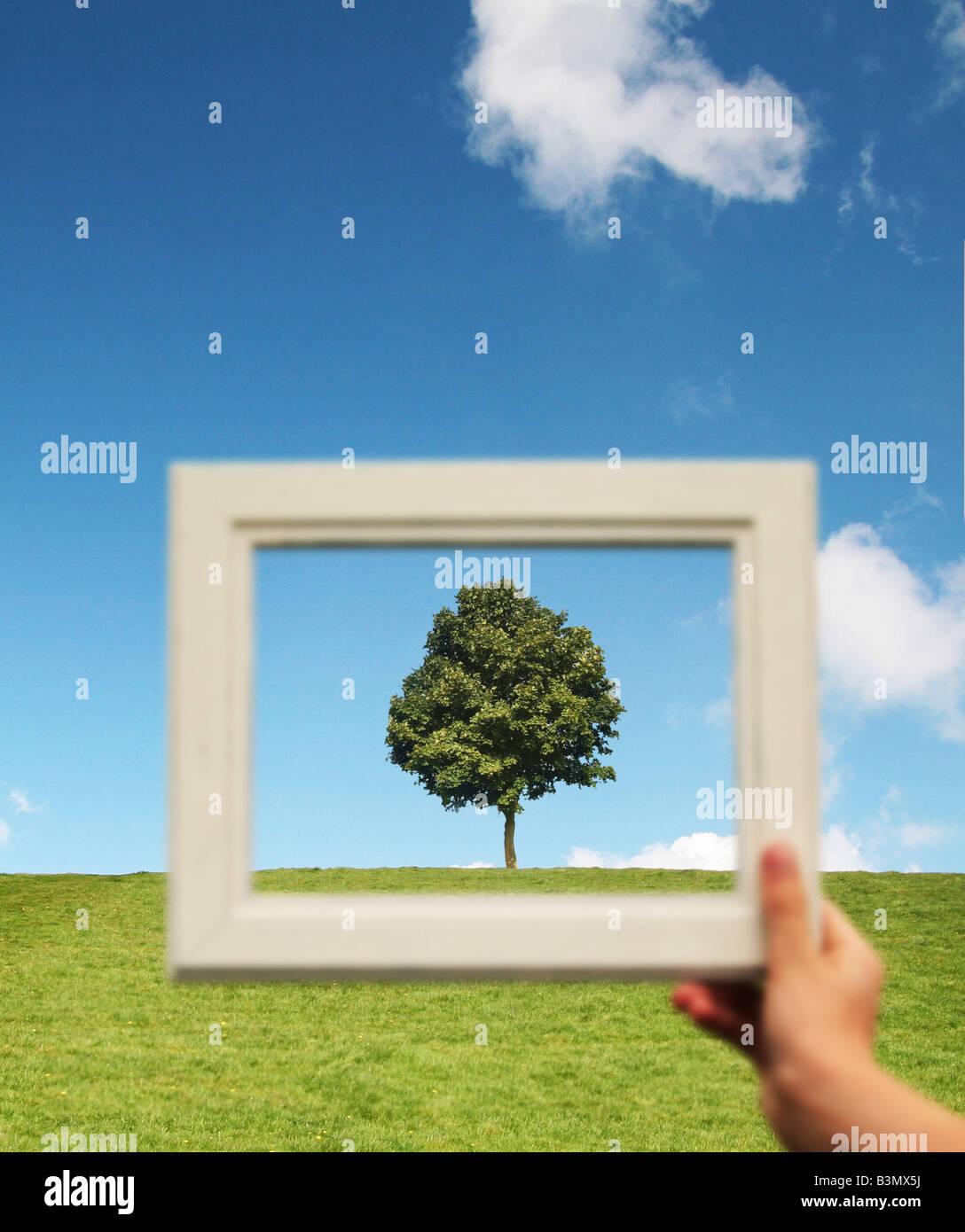 Girl holding un cadre photo en face d'un arbre Photo Stock