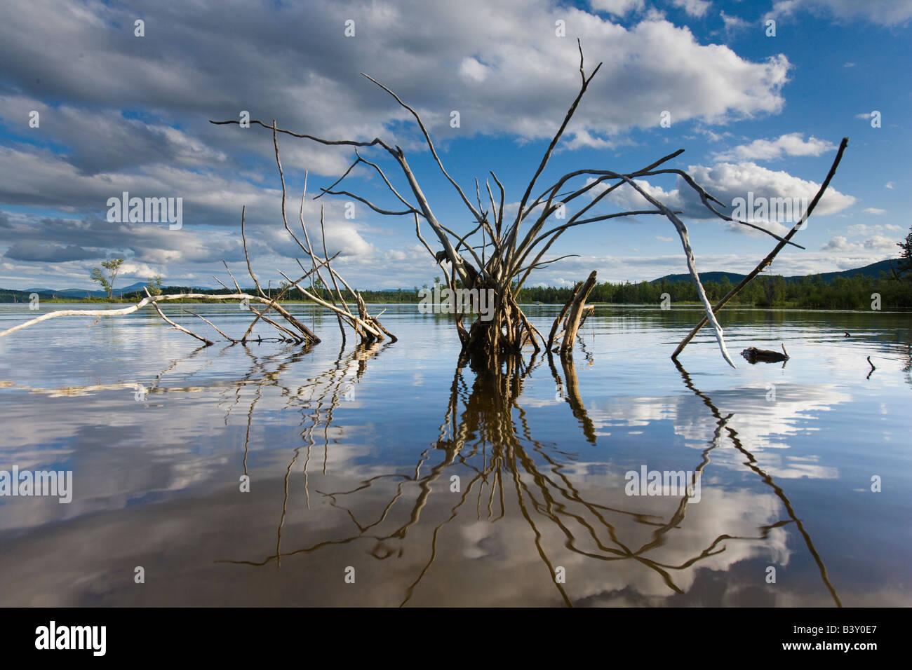 Lac rural en Nouvelle Angleterre Banque D'Images