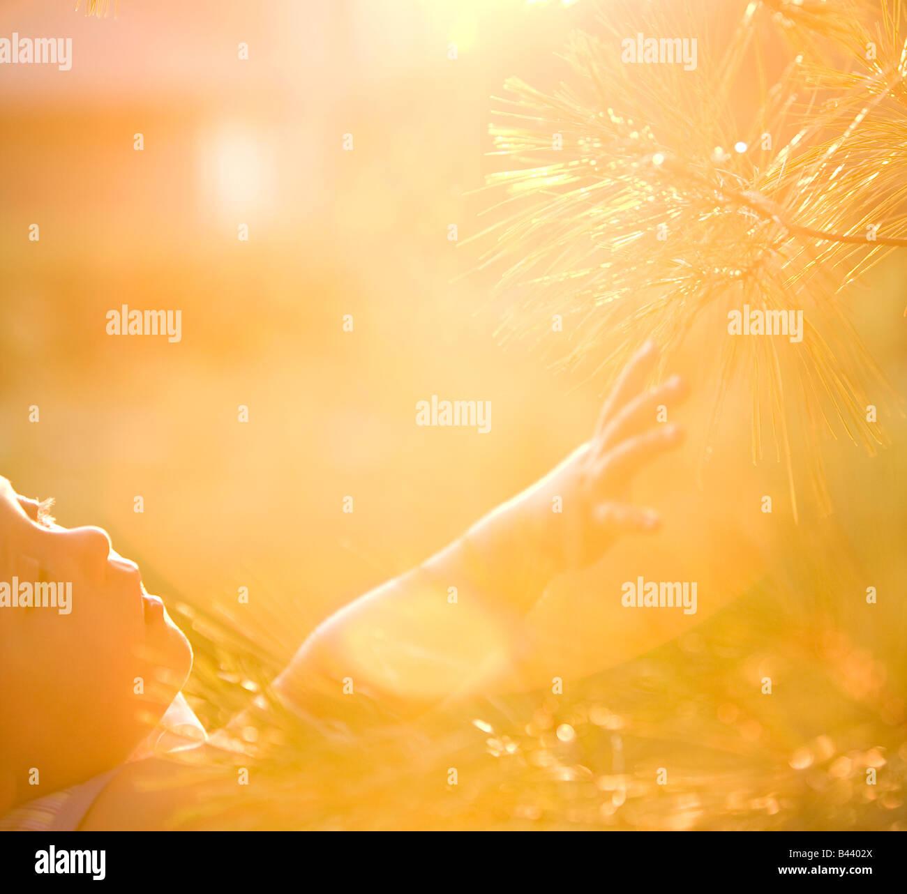 Jeune garçon sentiment branches d'un arbre Photo Stock