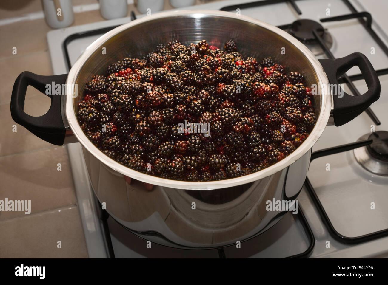 Les mûres sauvages (Rubus fructicosus) dans un fait-tout. Mûres sauvages (Rubus fructicosus) dans un faitout. Photo Stock
