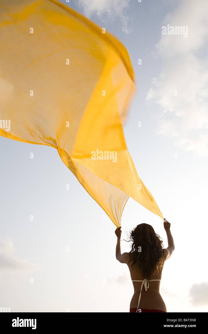 Femme avec un chiffon jaune Photo Stock