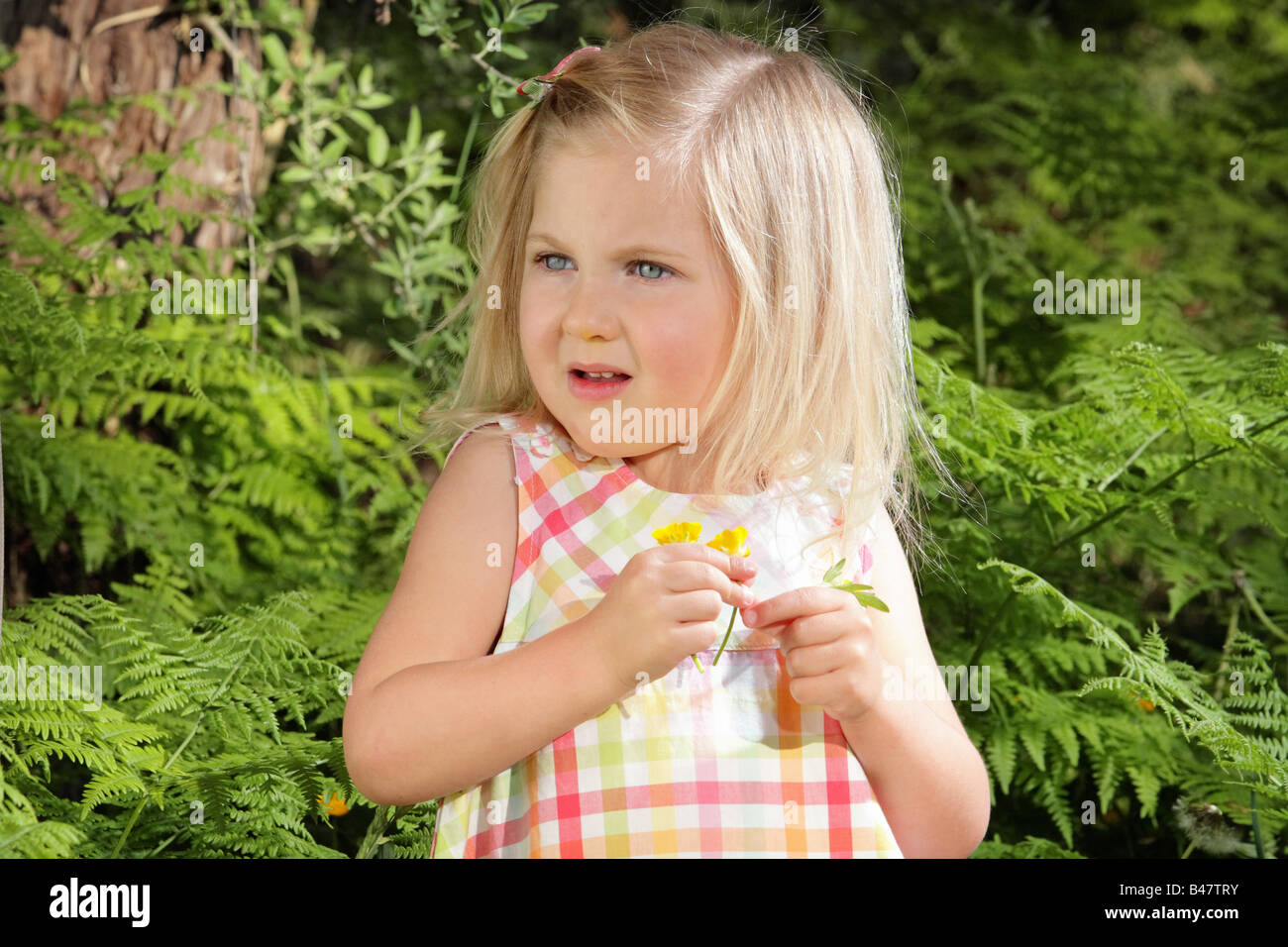 Young Girl picking wildflowers parmi les fougères Photo Stock