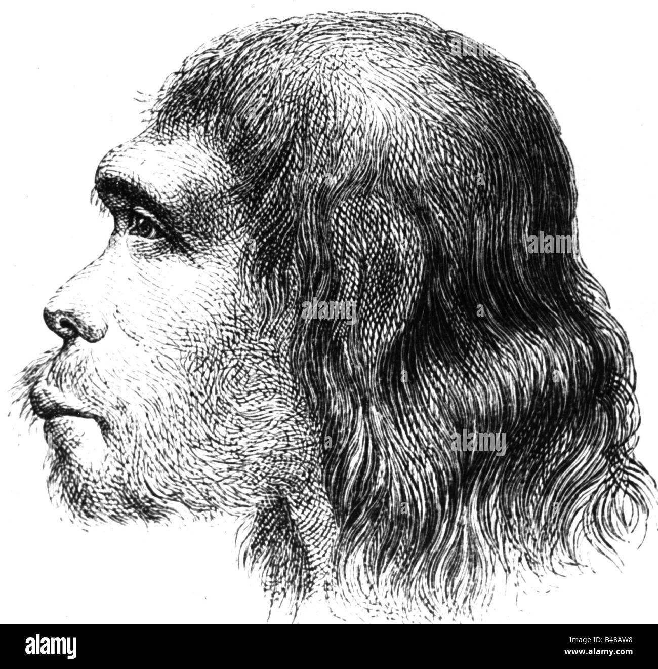 Eon / la préhistoire, les gens, les hommes préhistoriques, l'Homo Sapiens neanderthalensis, l'homme Photo Stock