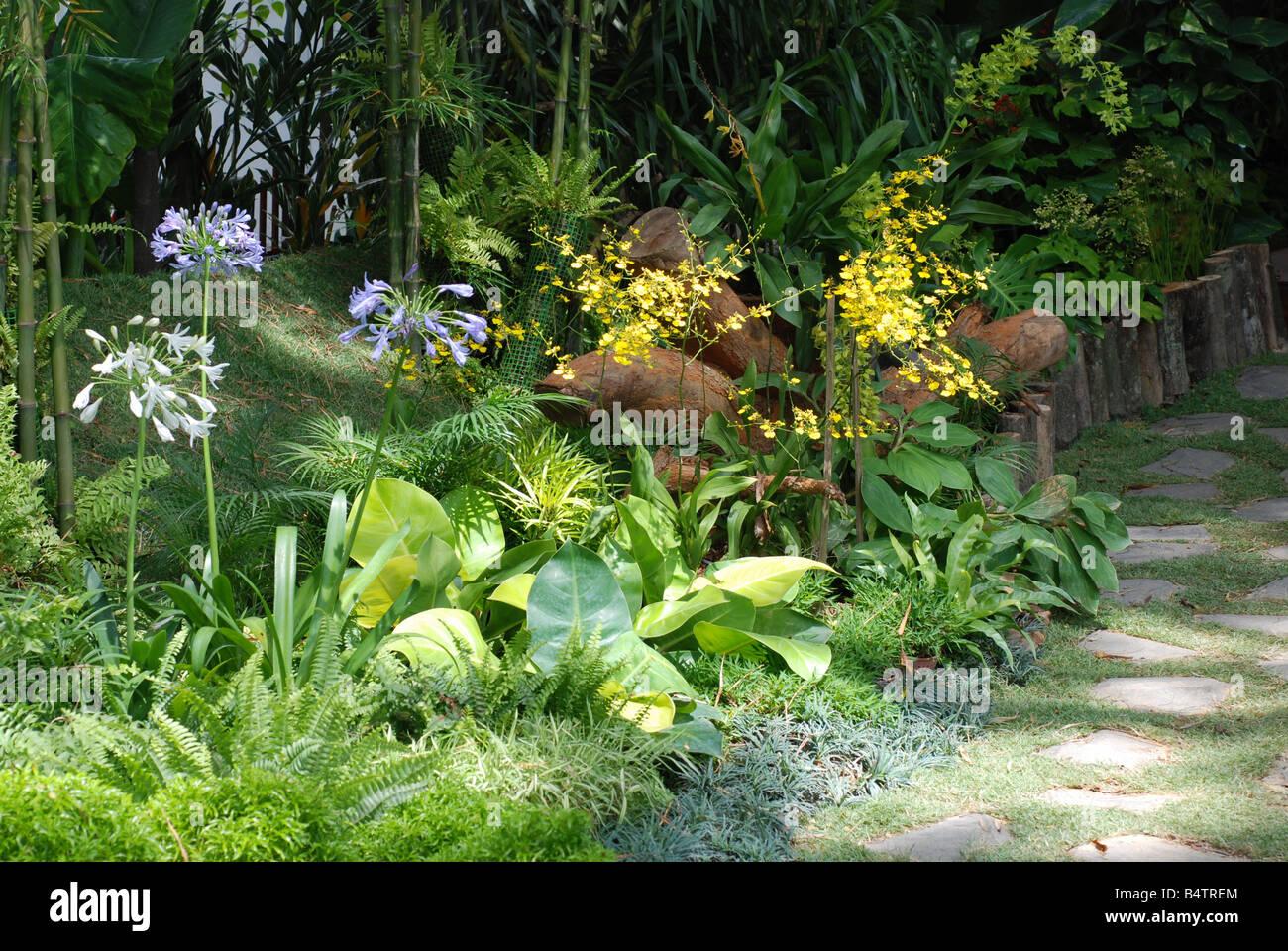 L'aménagement paysager de jardin Photo Stock