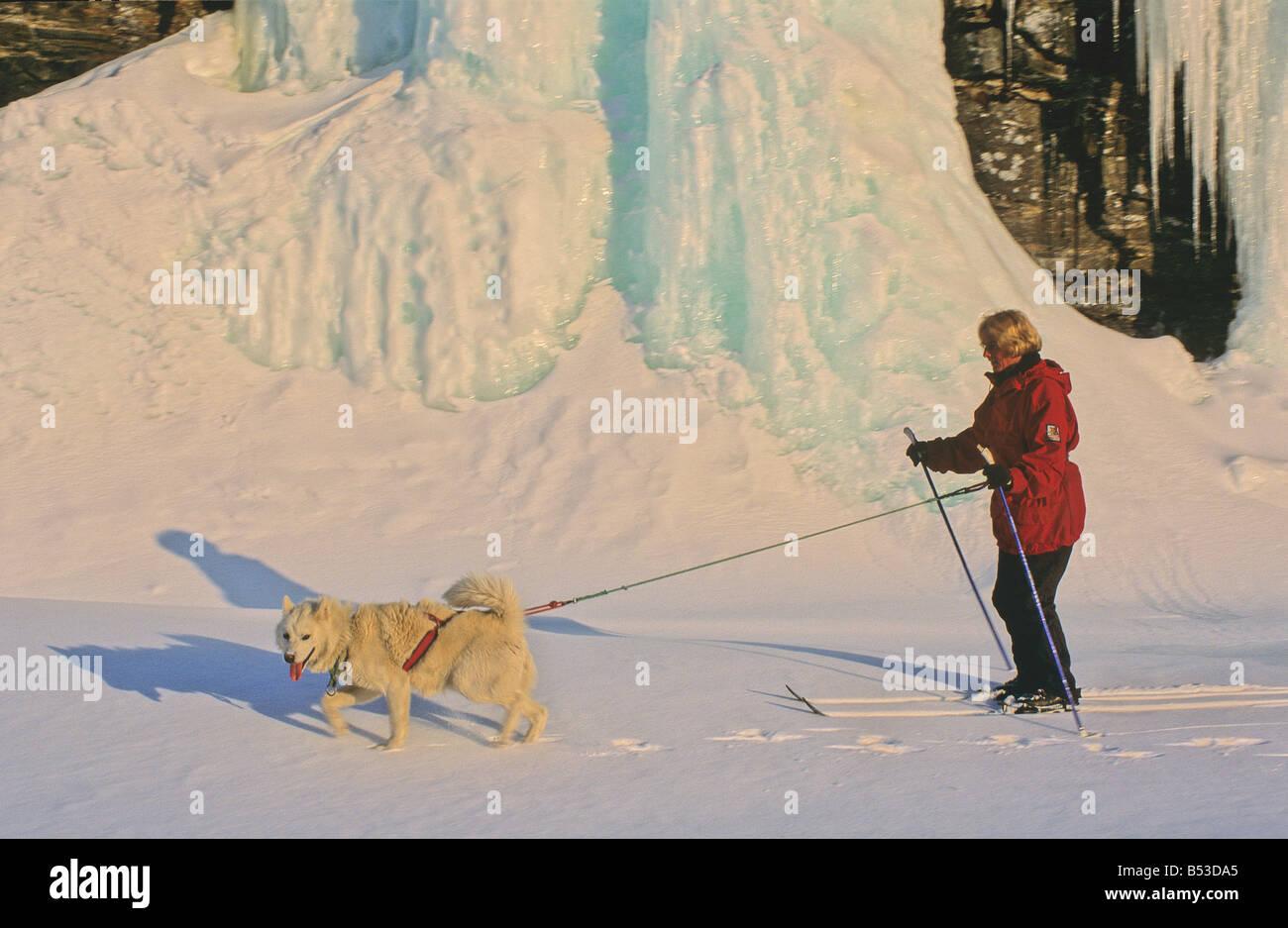Husky - femme tirant sur ski nautique Banque D'Images