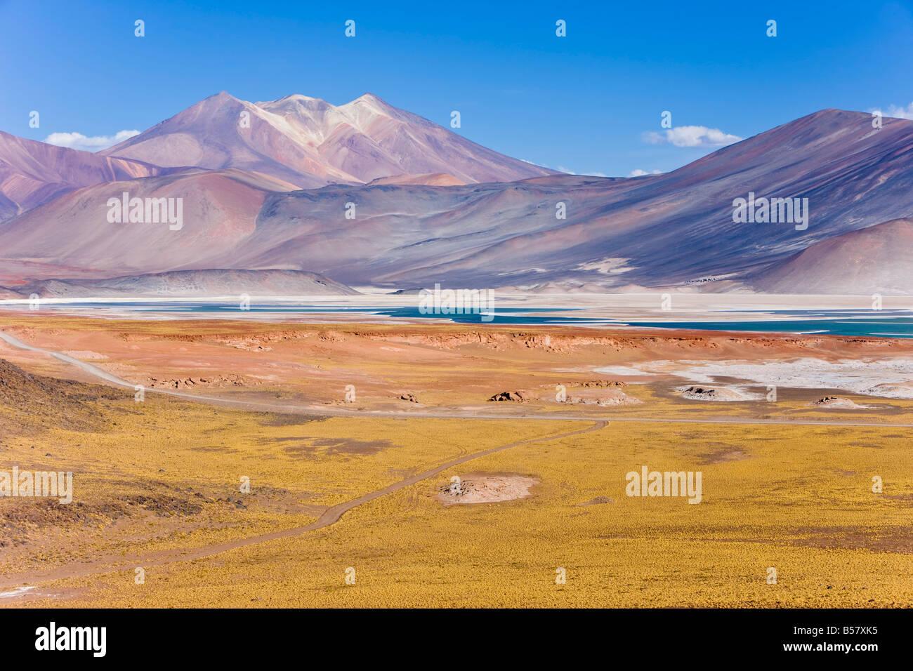 L'altiplano, la réserve nationale Los Flamencos, Désert d'Atacama, région d'Antofagasta, Photo Stock