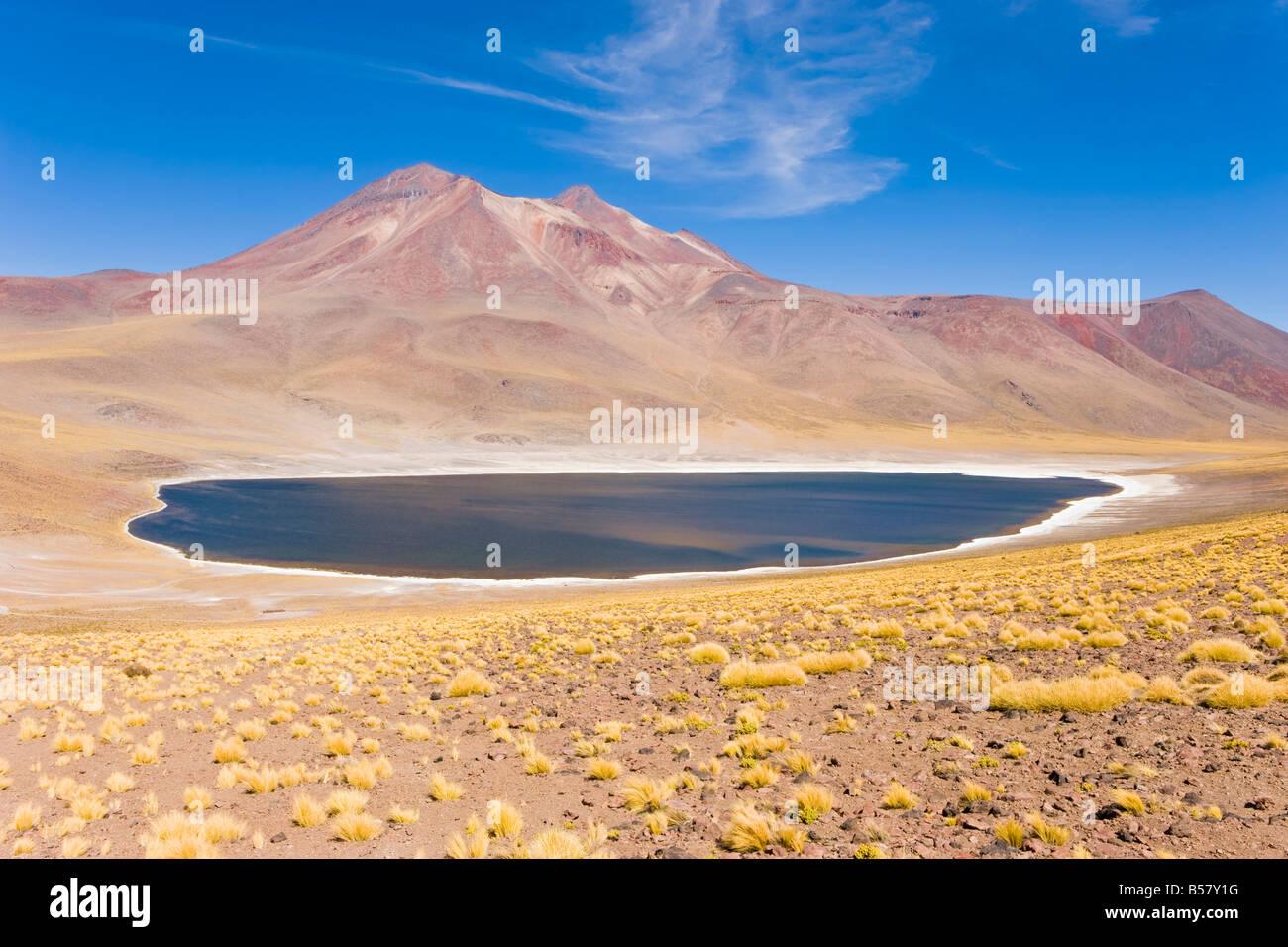 Laguna Miscanti, réserve nationale Los Flamencos, Désert d'Atacama, région d'Antofagasta, Photo Stock