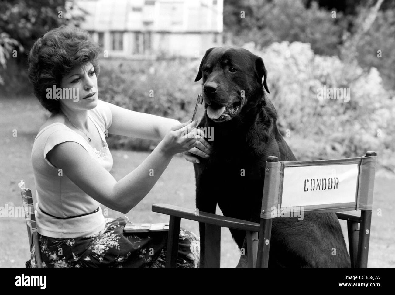 Divertissement: Film: Le défini pour le nouveau thriller film 'Le rendez-vous' avec Edward Photo Stock