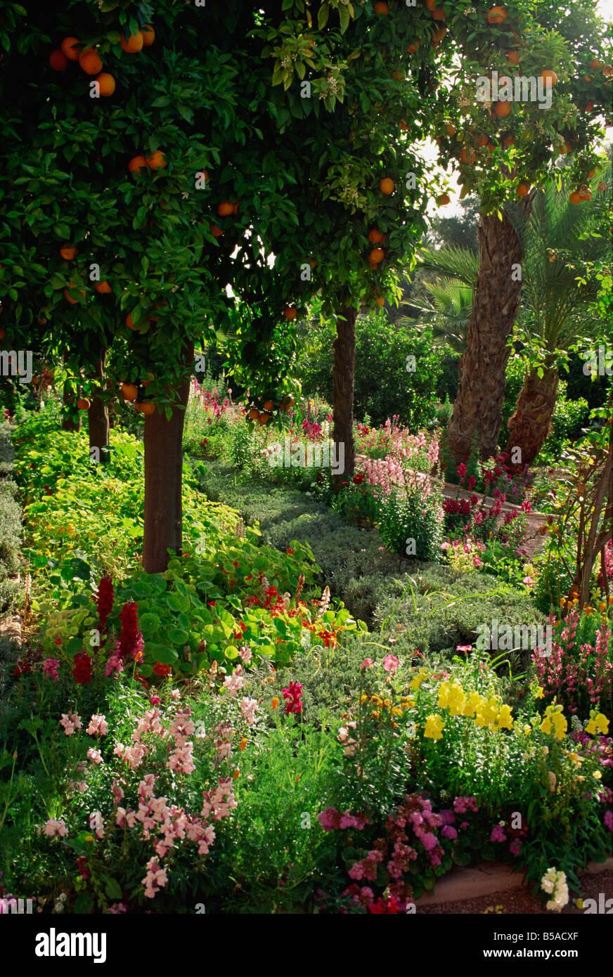 Jardin de la Mamounia Hotel, Marrakech, Maroc, Afrique du Nord, Afrique Photo Stock
