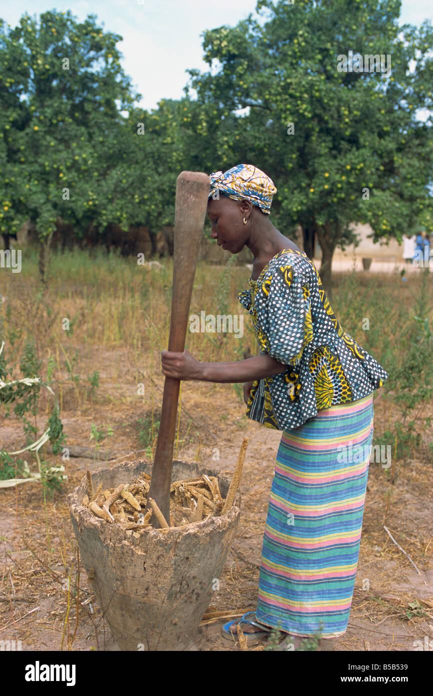 Battre le mil pour la farine, près de Banjul, Gambie, Afrique de l'Ouest, l'Afrique Photo Stock