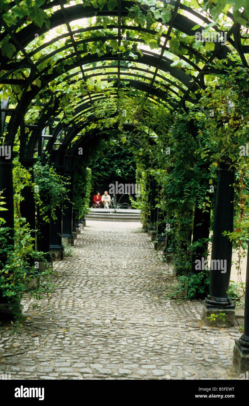Pergola Avec Vigne Raisin Jardin Dans La Maison De Rubens A Anvers En Belgique Photo Stock Alamy