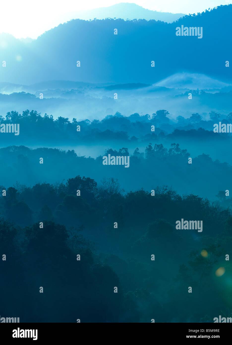 Matin brumeux de zone de collines avec rayon de lumière. Banque D'Images