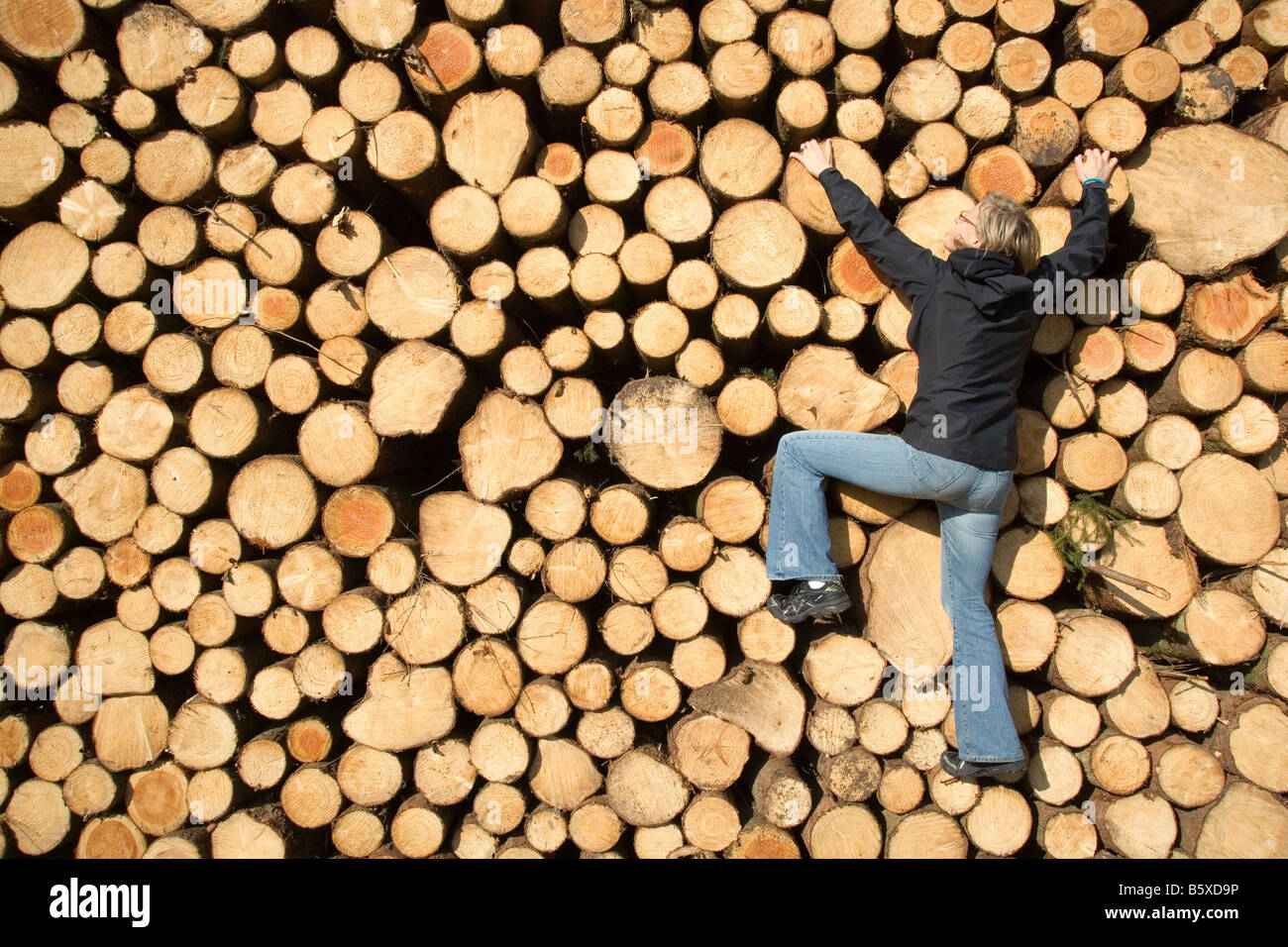 Woman climbing up une pile de grumes d'arbres Photo Stock
