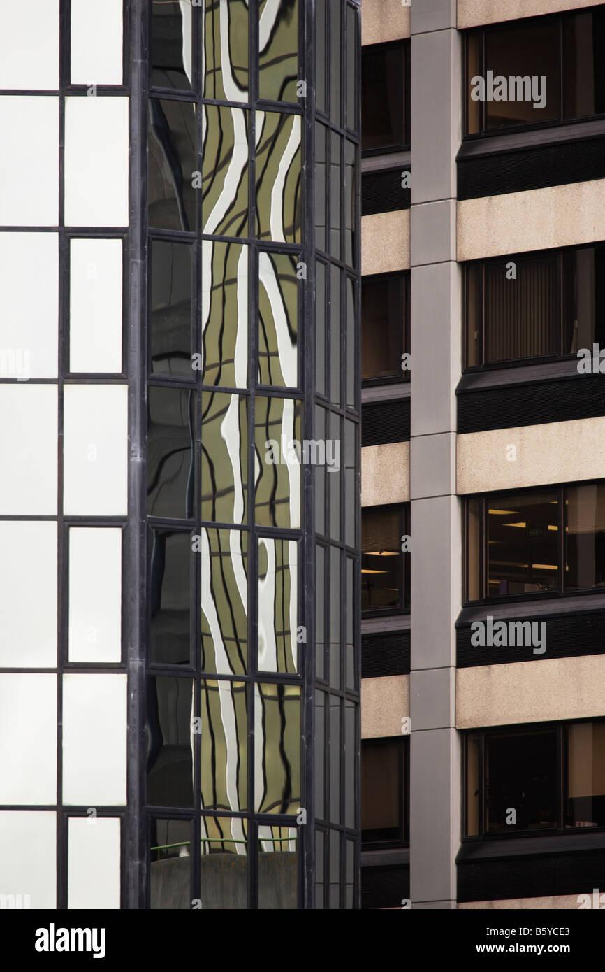 Skyscraper réflexions Wellington New Zealand Banque D'Images