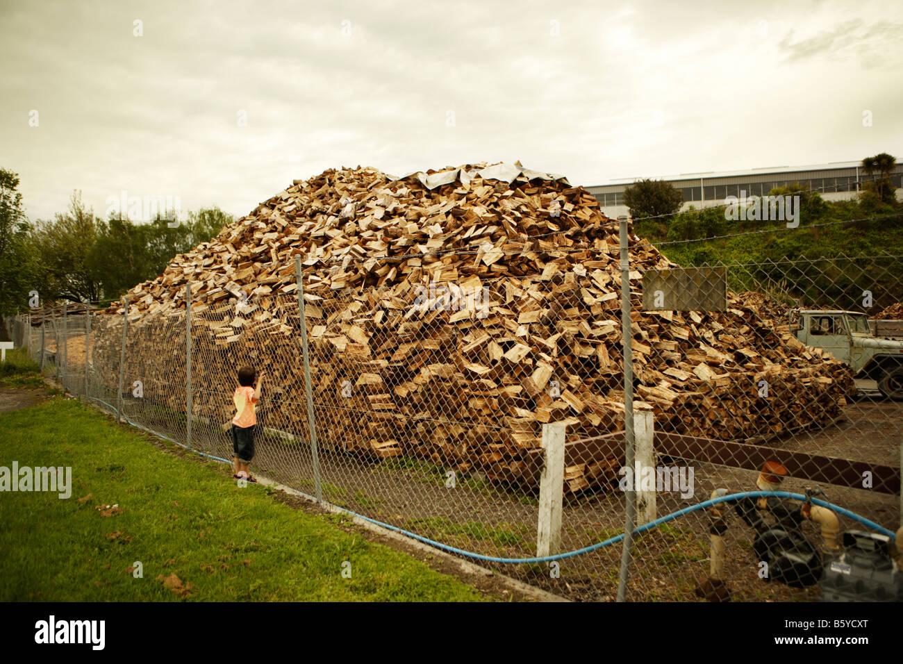 Pile de bois Palmerston North Nouvelle Zélande Banque D'Images