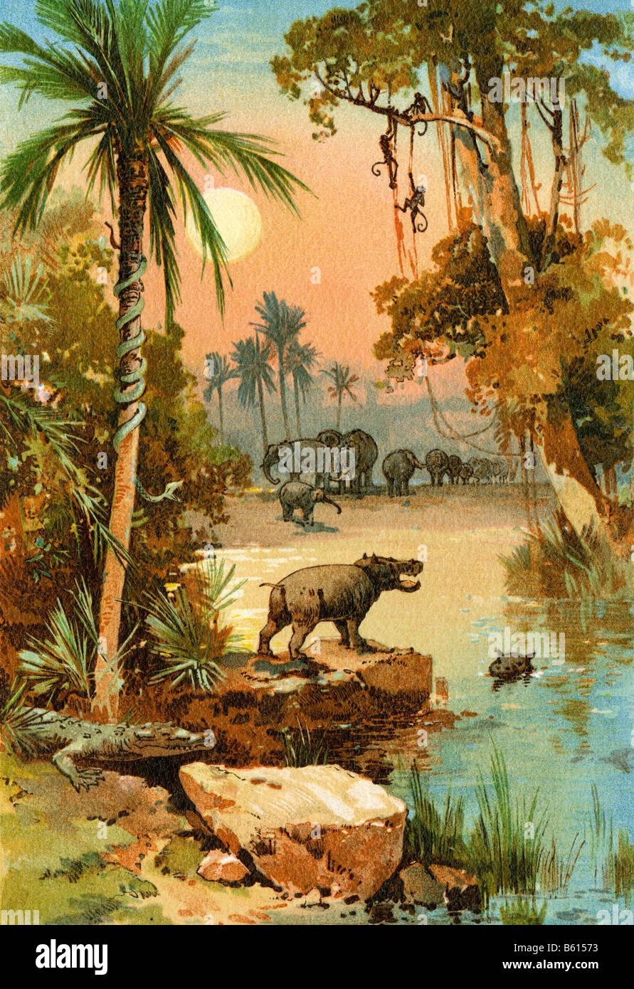 Les éléphants et les hippopotames le long du fleuve Congo. Lithographie couleur Photo Stock