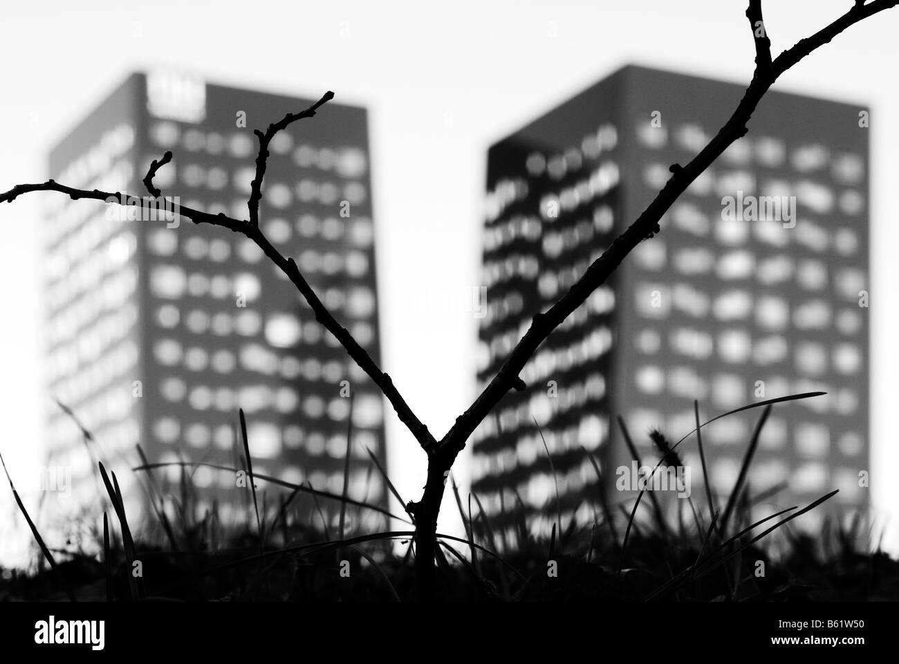 Milan. Gratte-ciel jumeaux Photo Stock
