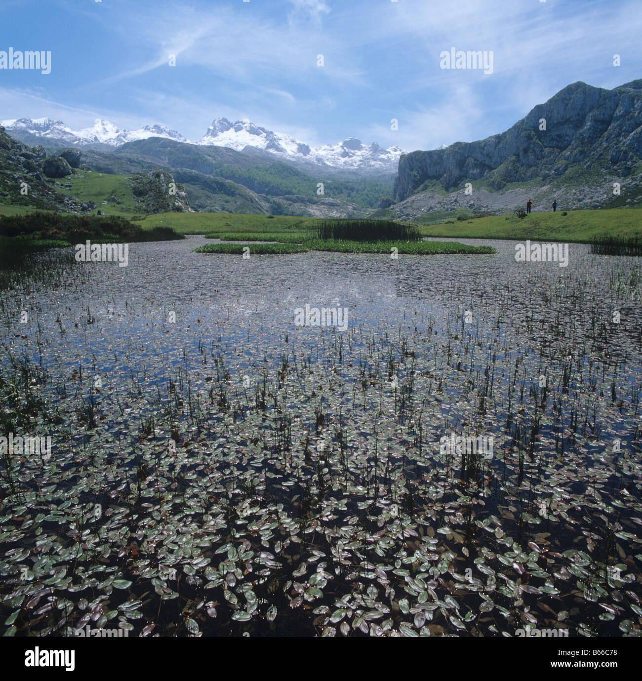Piscine à la sortie d'un lac de haute montagne dans le parc national Picos de Europa en Espagne Photo Stock