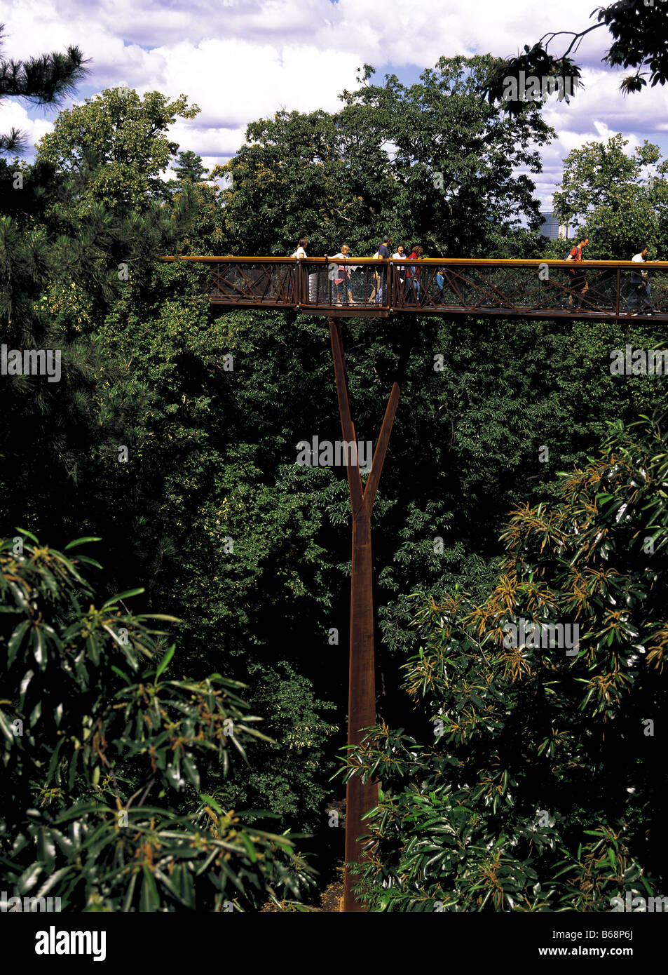 Rhizotron et Xstrata Treetop Walkway au Royal Botanical Gardens de Kew en Angleterre Photo Stock