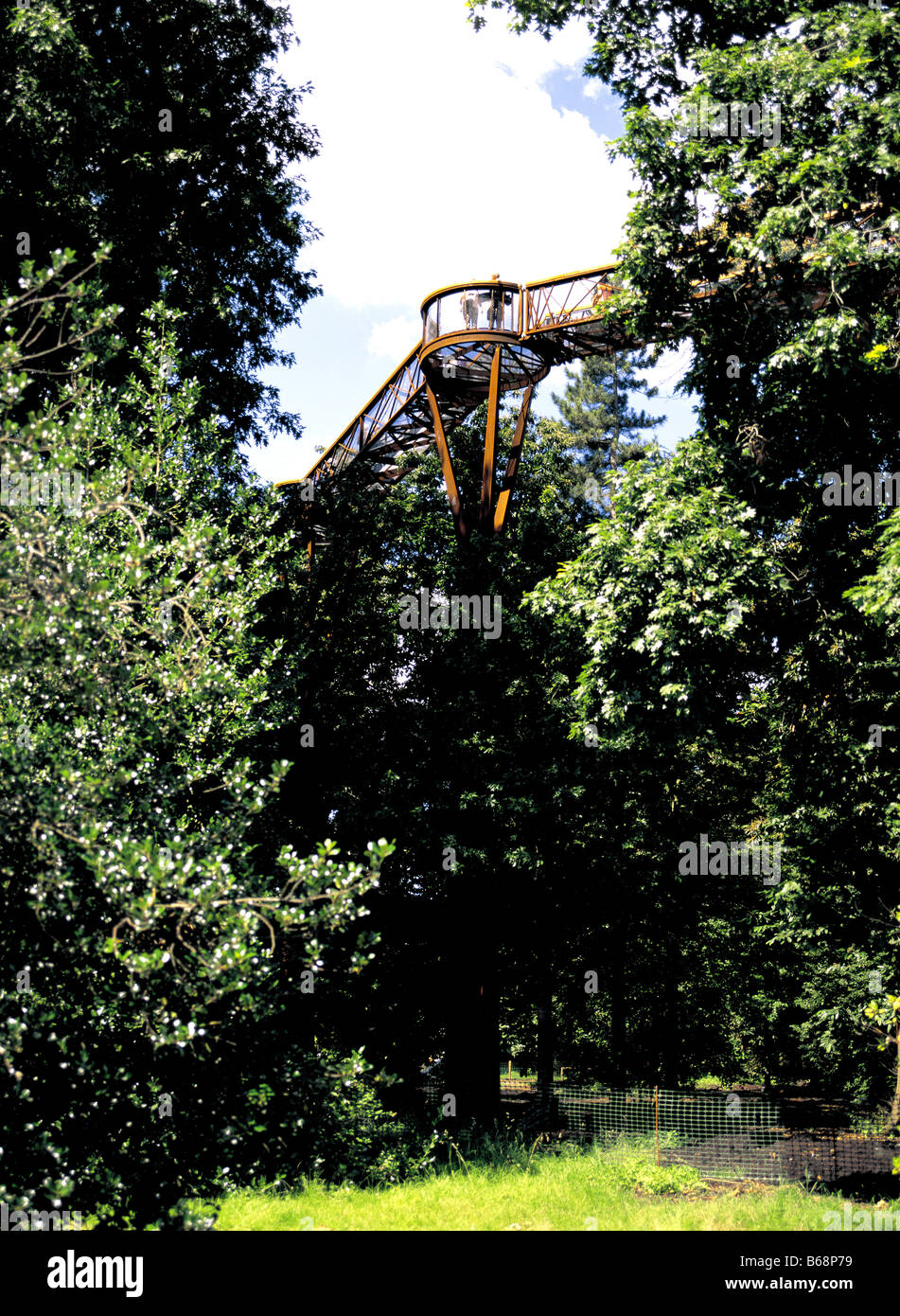Rhizotron et Xstrata Treetop Walkway au Royal Botanical Gardens de Kew en Angleterre Surrey Photo Stock