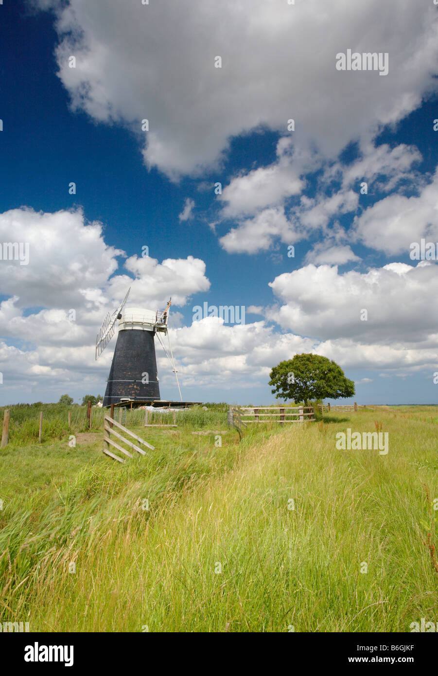 Drainage moutons moulin, sur le Marais Halvergate, Norfolk Broads Photo Stock