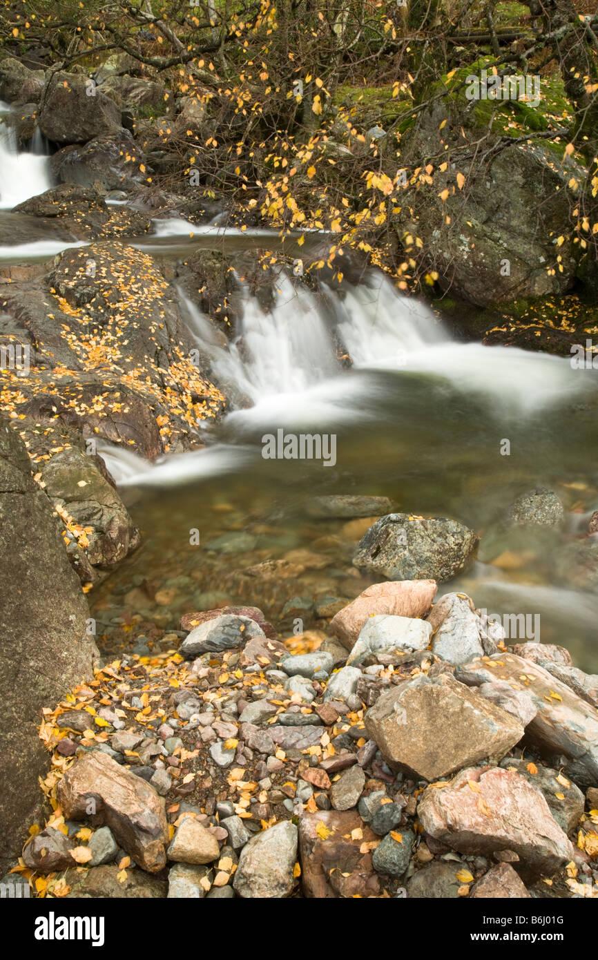 The Britannia Inn vigueur tumbling sur rochers dans la vallée de l'automne Grasmere Cumbria Lake District Uk Banque D'Images