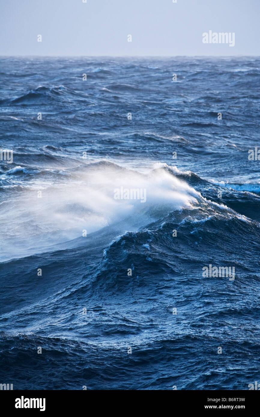 Une mer grosse vague dans l'océan Antarctique gales Photo Stock