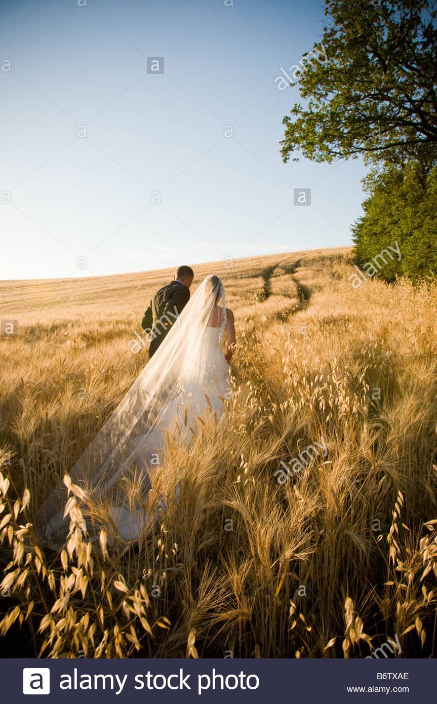 Les nouveaux mariés marche dans champ de blé en Ombrie, Italie. Photo Stock