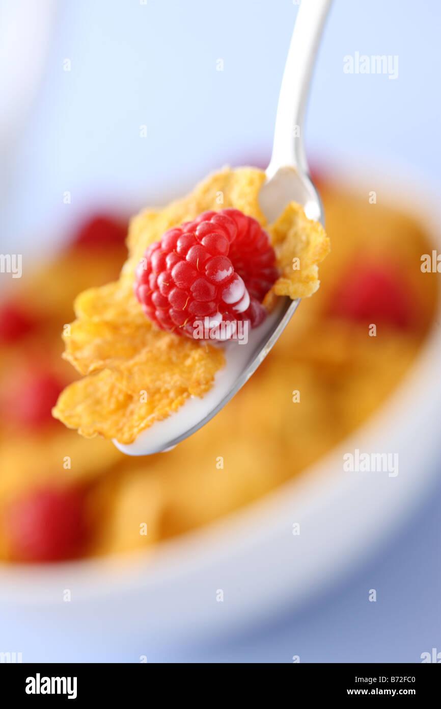 Cuillère avec du lait flocons de maïs et de framboise bol de céréales en arrière-plan Photo Stock