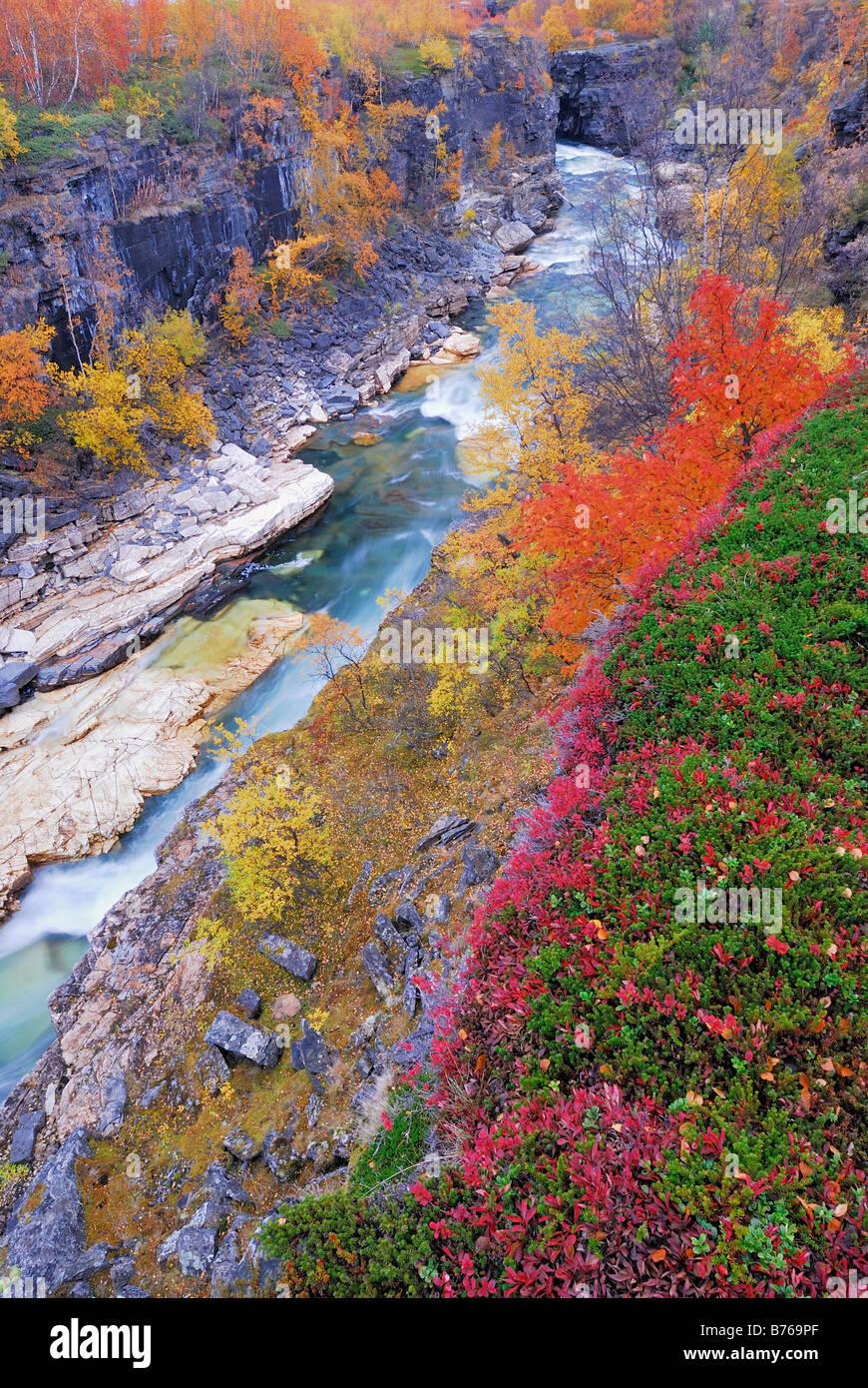 Jakka abisko abisko canyon de la rivière de montagne paysage njulla abisko national park europe suède laponie norrbotten Banque D'Images