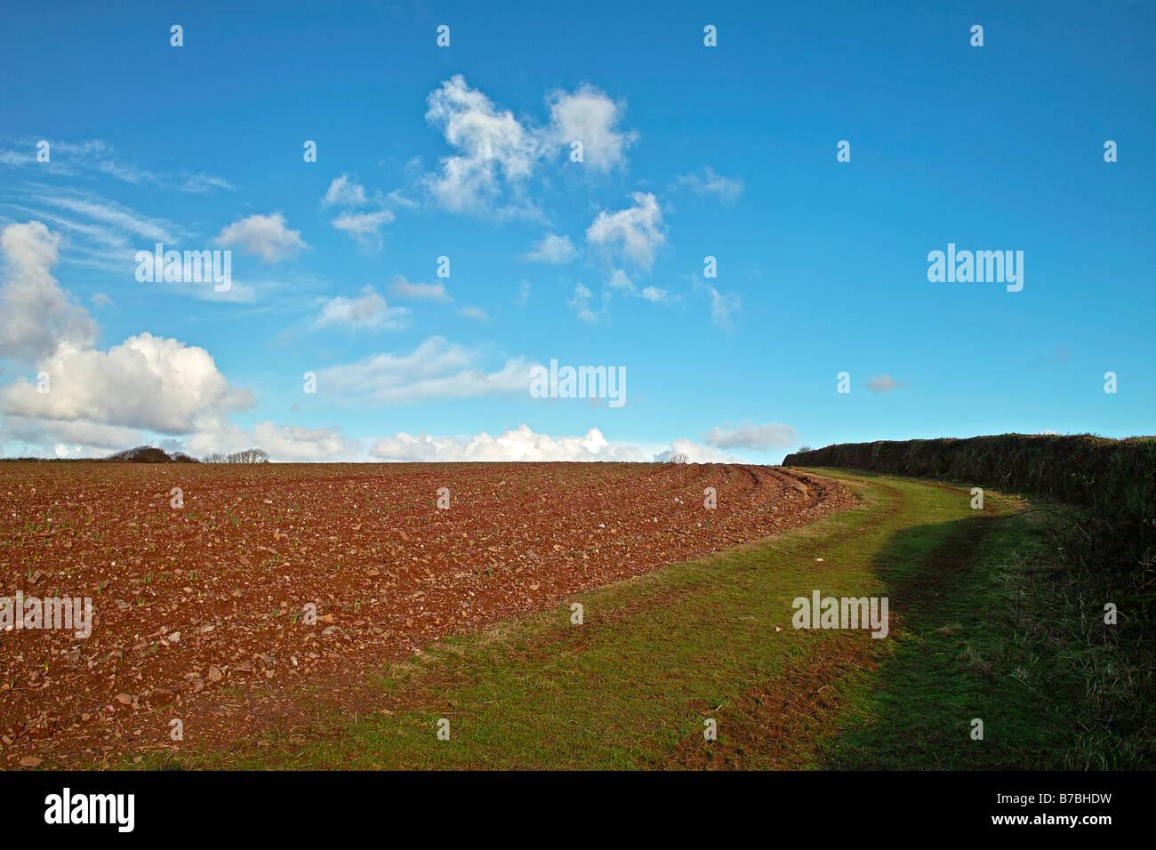 Les terres agricoles près de frodsham dans Cheshire, Angleterre, Royaume-Uni Photo Stock