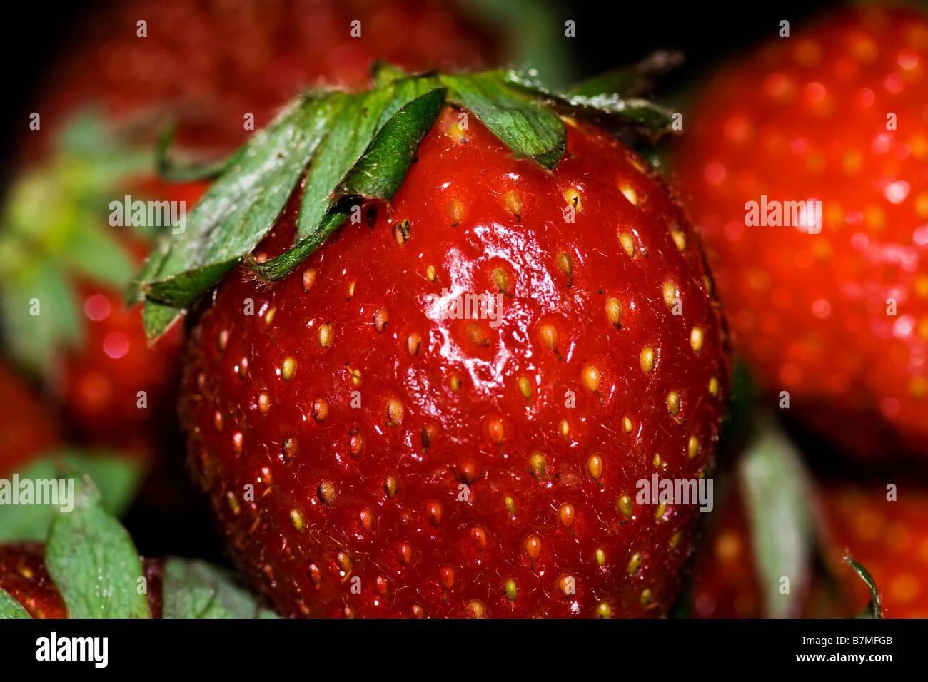Photo macro d'une fraise Photo Stock