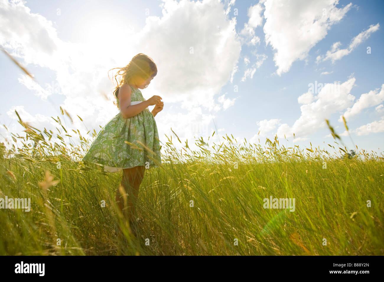 Jeune fille dans un champ herbeux au Dakota du Nord Photo Stock