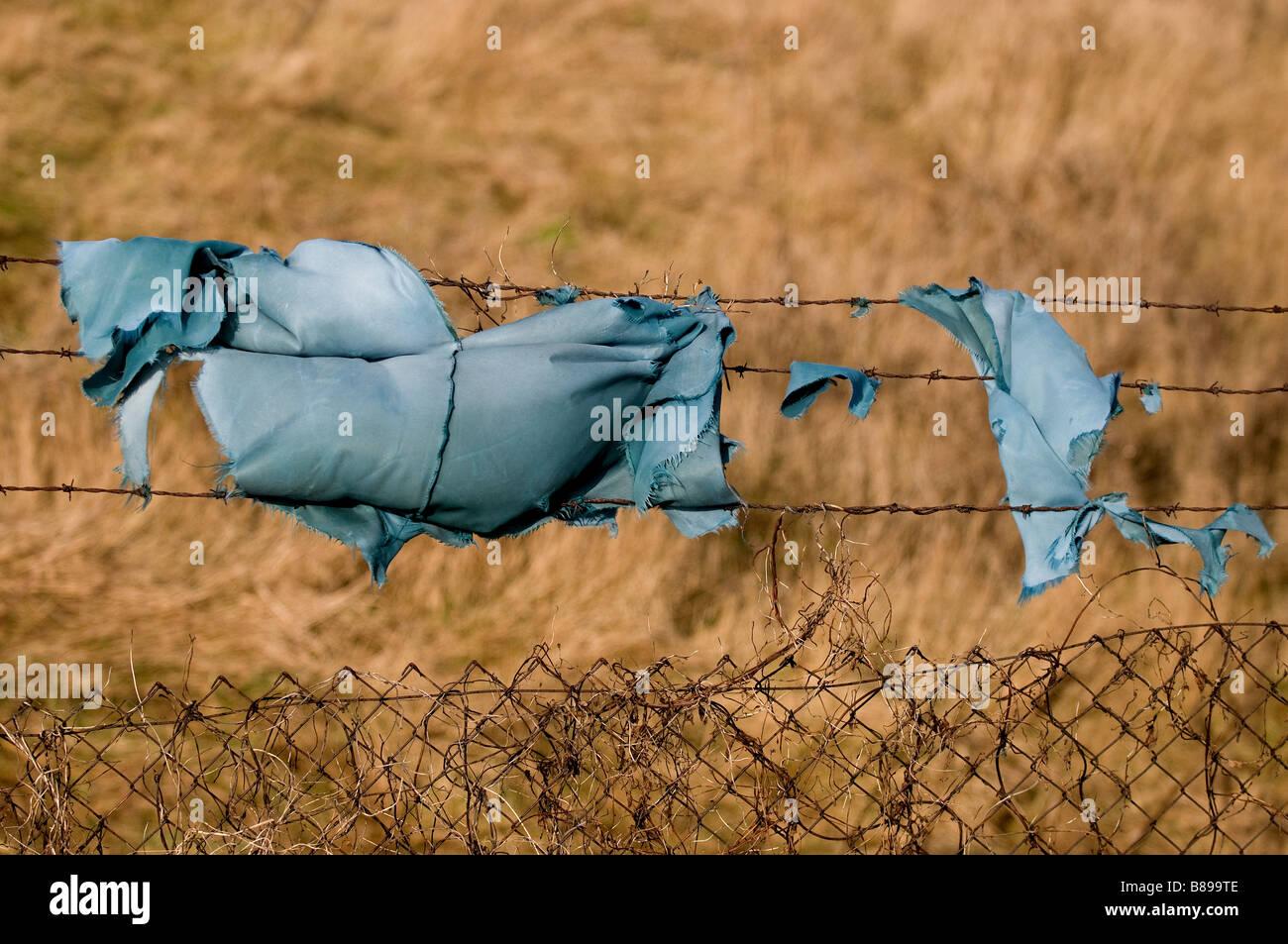 Un fragment de tissu bleu suspendu à une clôture en fil barbelé. Photo Stock
