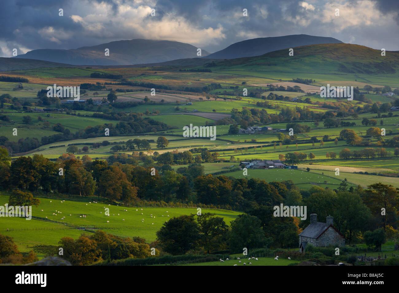 Terres agricoles vallonnées au bord du Parc National de Snowdonia, c Ysbyty Ifan, Conway Comté, au nord Photo Stock