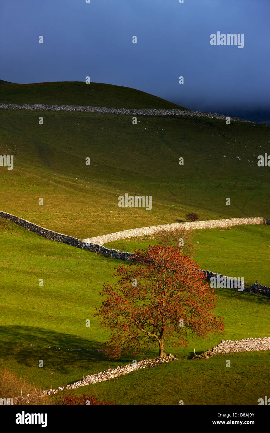 Les murs en pierre et granges nr Kettlewell, Wharfedale, Yorkshire Dales National Park, England, UK Photo Stock