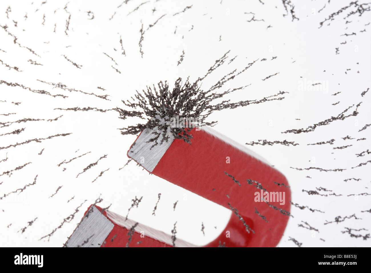 Les particules de fer magnétisé par dépôt d'aimant de fer à cheval Photo Stock