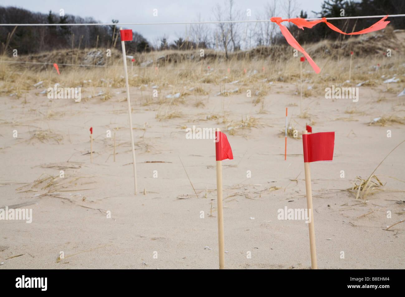 Les chercheurs étudient le mouvement des dunes de sable Photo Stock
