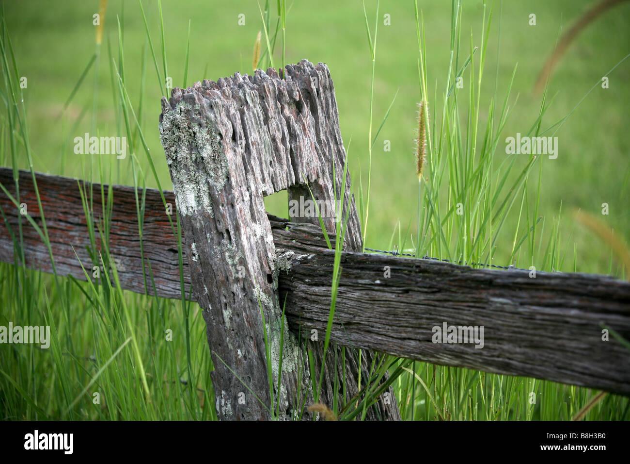 Publiez et clôture Photo Stock